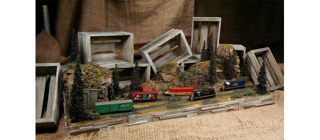 Raildig DIO-10 Diorama   Limited, One Available